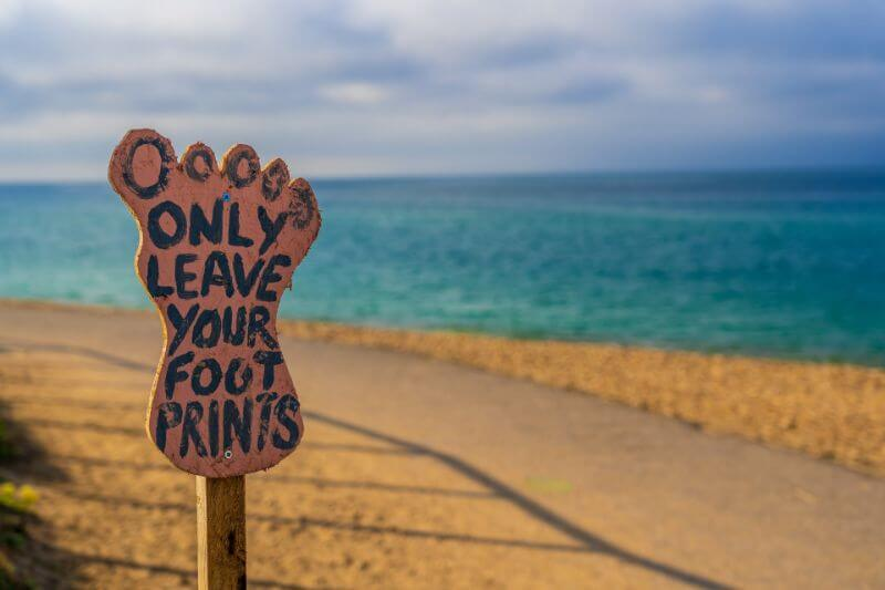 How to Reduce Your Carbon Footprint and Why You Really Should