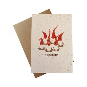 Seed Paper Christmas Greetings Card - Gnomes Group